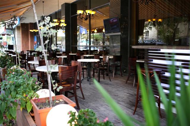 Отель Ани Плаза,кафе