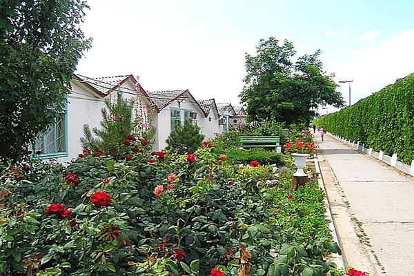 Туристско-оздоровительный комплекс Золотой Пляж (Береговое) ,Территория, домики каменные