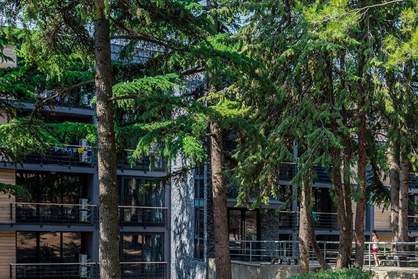 Отель Green park Yalta-Intourist,Фасад корпуса