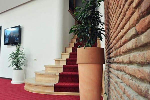 Отель Shine on Rustaveli,