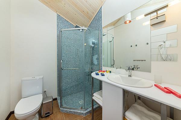 Standart double - ванная комната