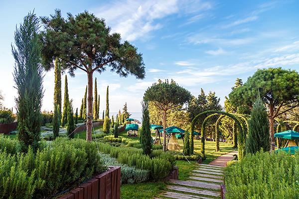 Санаторно-курортный комплекс Mriya resort,Территория парка
