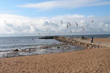 Санаторий Северная Ривьера,Пляж