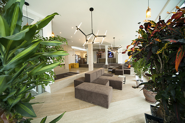 Санаторий PARUS Medical Resort&Spa,холл ресепшен
