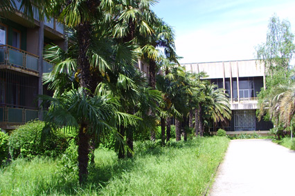 Пансионат Amza Park Hotel / Амза  (ex. Энергетик),Территория