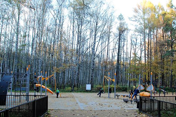 61.Переделкино.  детская площадка  в парке