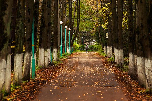 Кардиологический санаторный центр Переделкино,Осень