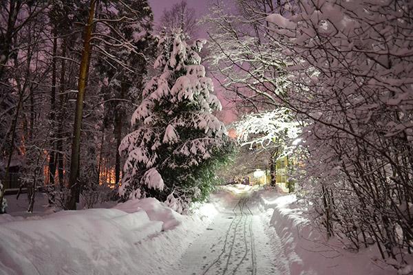 Кардиологический санаторный центр Переделкино,Зима