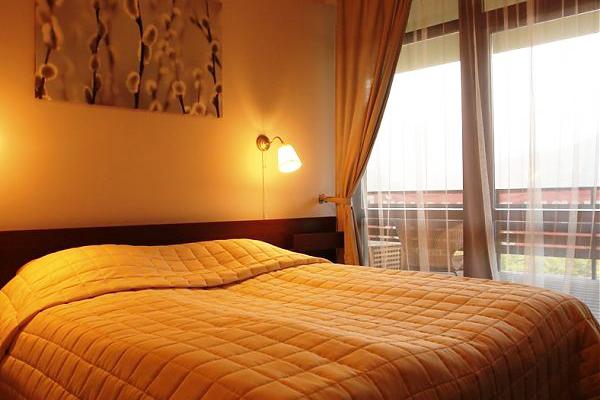 Отель Катерина-Альпик,Апартамент 1 спальня