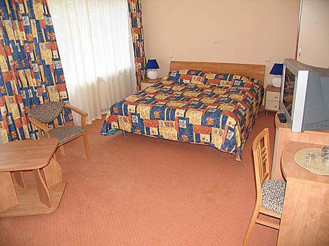 Отель Валдайские зори,Номер «люкс» 1-комнатный