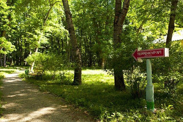 Санаторий Лесной,