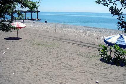 Дом отдыха Солнечный,Пляж