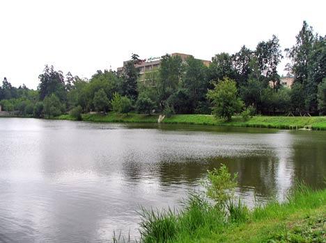 Санаторий Ревиталь Парк,Территория