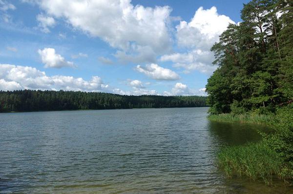 Санаторий Лесные озера,Озеро