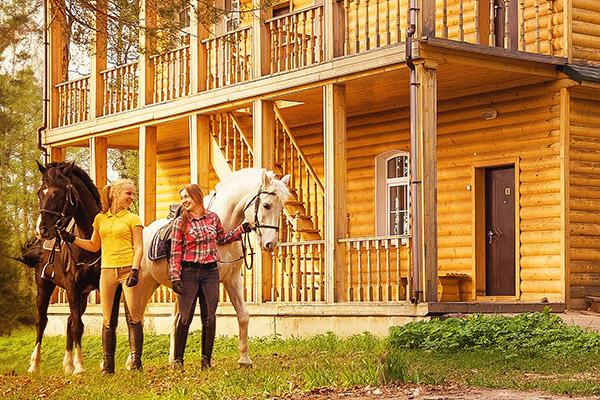 лошади у русского