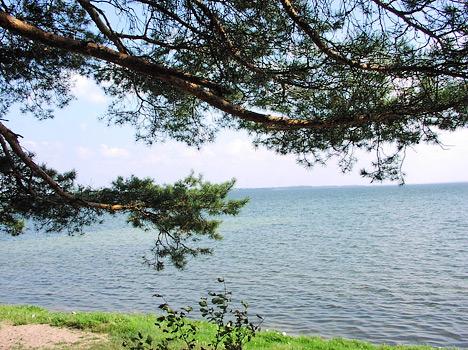 Санаторий Приозерный,Озеро Нарочь