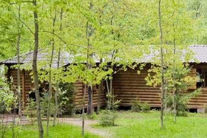 Дом отдыха Боярская усадьба,Изба