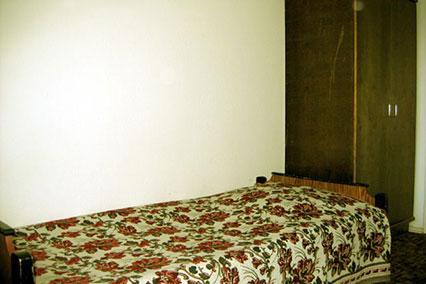 Гостиница Царицыно ,1-местный эконом
