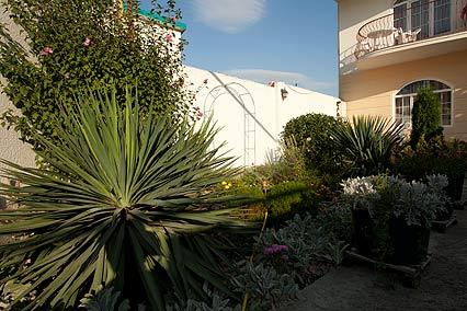 Гостевой дом Валенсия (Анапа-центр),Территория
