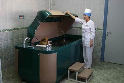 Грязевая пелопилоидная ванна