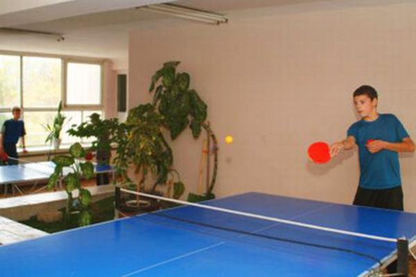 Детский лагерь отдыха Полярные зори,Настольный теннис