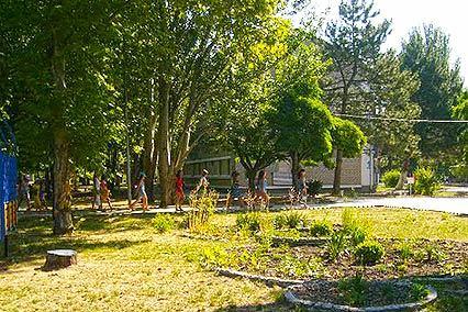 Детский лагерь отдыха Полярные зори,Территория